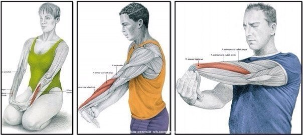 Растяжка мышц рук. Самбо Уфа