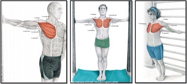 Растяжка грудных мышц. Самбо Уфа