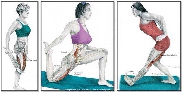Растяжка бедренных мышц. Самбо-Уфа