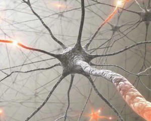 Нервные ткани. Самбо-Уфа