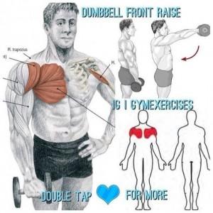 Упражнения для дельтовидных мышц 3. Самбо-Уфа