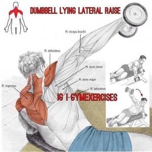 Упражнения для дельтовидных мышц 1. Самбо-Уфа