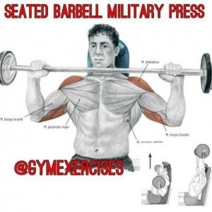 Упражнения для дельтовидных мышц 4. Самбо-Уфа