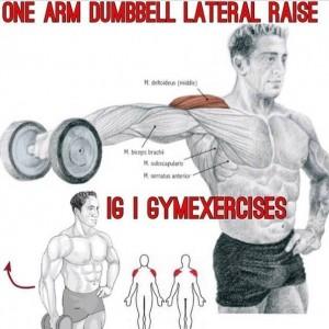 Упражнения для дельтовидных мышц 5. Самбо-Уфа