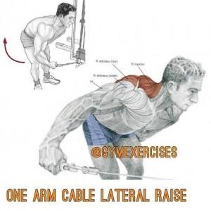 Упражнения для дельтовидных мышц 6. Самбо-Уфа
