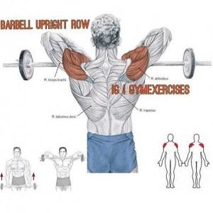 Упражнения для дельтовидных мышц 8. Самбо-Уфа